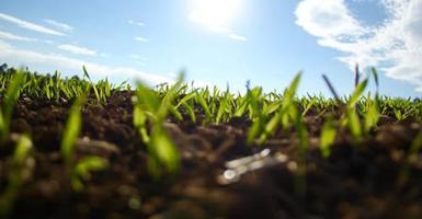 昆明绿化土壤检测,绿化土壤检测