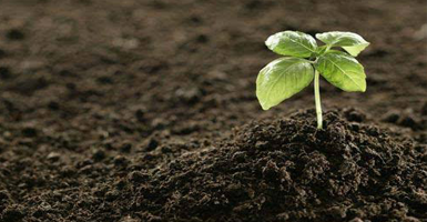 安徽土壤检测,土壤检测,种植土壤检测,土壤检测报告
