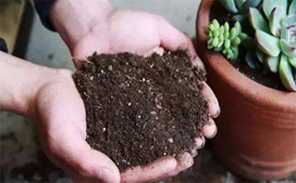 土壤挥发性有机物(VOCs)检测