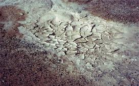 污泥危险废物鉴别