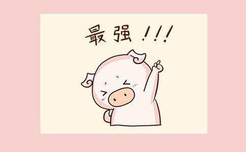 喜欢猪的人送什么礼物讨喜又有心意