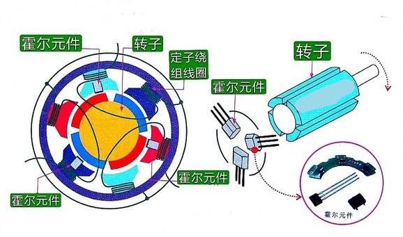 无刷直流电机内部结构图