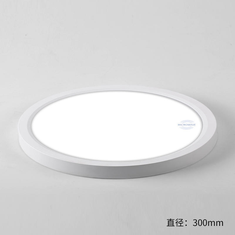 MICROWARE Surface Mounting Ceiling Light