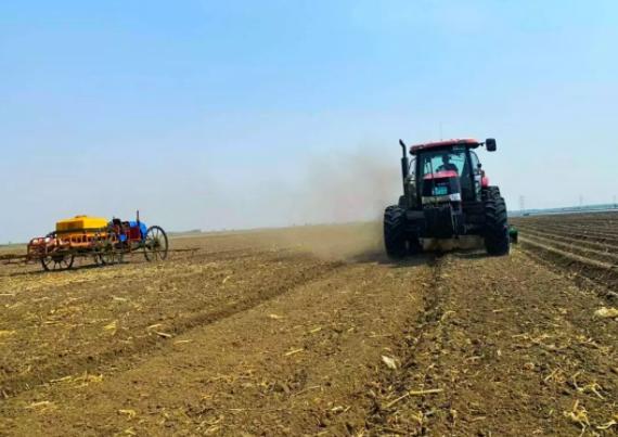 机械GPS定位系统 助红参胡萝卜种植合作社实现自动作业