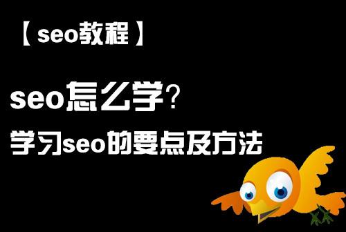 「seo教程」seo怎么学,学习seo的要点及方法