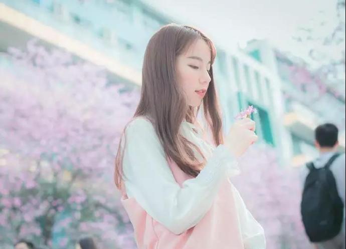 李枫是一个低调的上门女婿,却被老婆娘家看不起