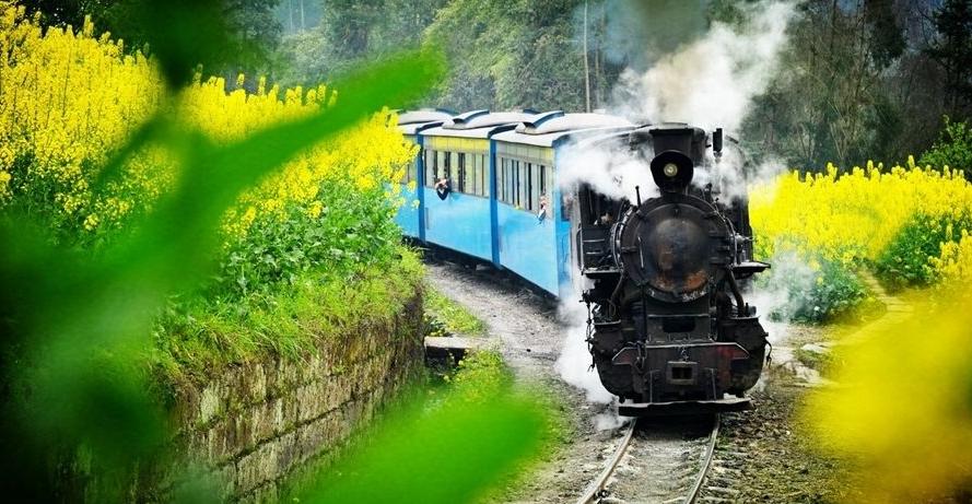 欢迎来到死亡列车(2)