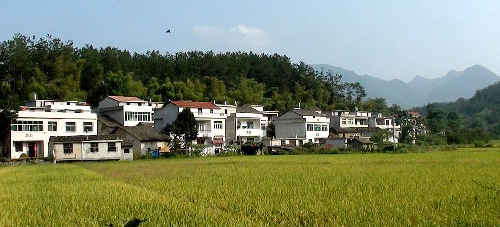 农村版聊斋志异(3)